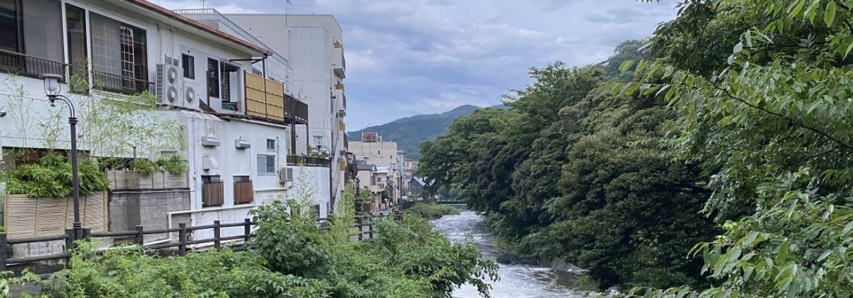 Back of the Yugawara ryokan