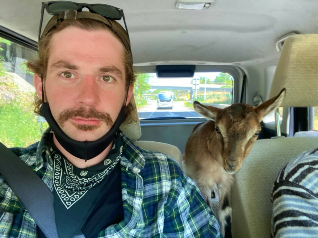 Matt with a goat in a car