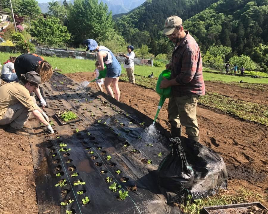 Farming at Fujino Farm